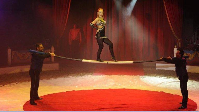 Bucharest hosts International Circus Festival