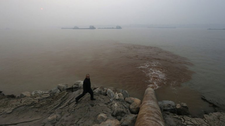 China will have ecology warning system by 2020