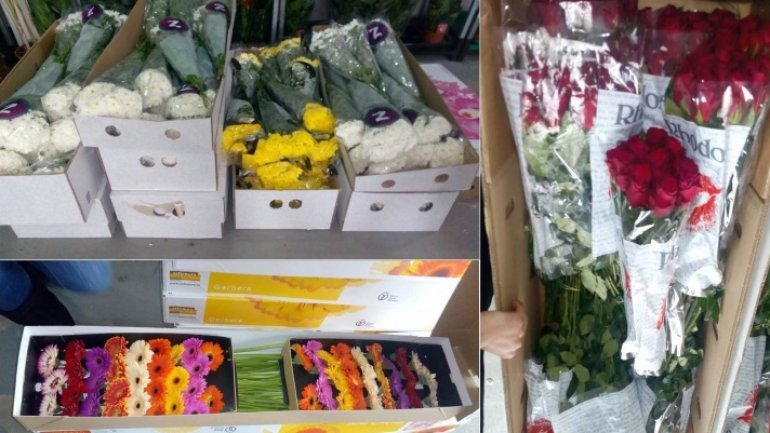 Customs officers seize smuggled flowers and used socks