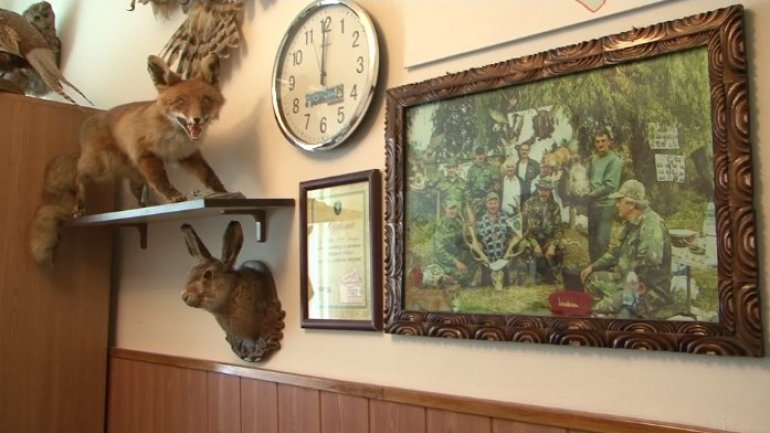 The wealth of a Straseni town hunter: wild ducks, owls and wild boars