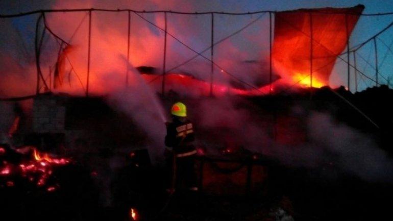 Cows, pigs die in big fire near Chisinau