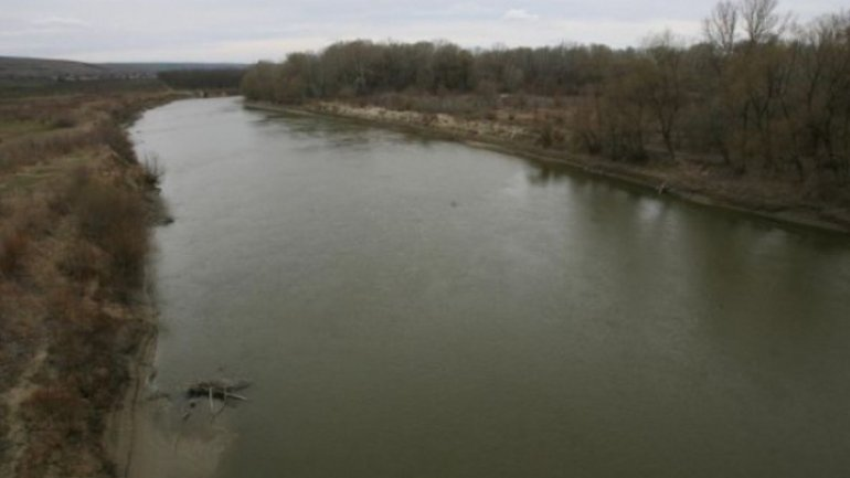 Romanian plant leaks polluters into Prut river