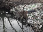 Volunteers clean up Chisinau's river