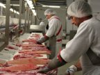 Meat processing plant to open in Balti