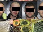 Police annihilate drug dealing gang
