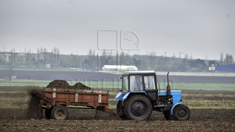 Farmers begin work in fields, vineyards and orchards