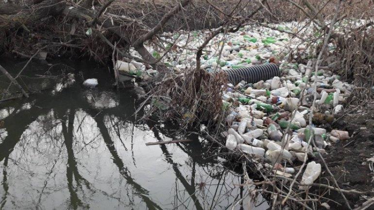 Volunteers clean up Chisinau's river