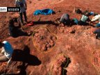 70 MILLION YEARS OLD dinosaur eggs with embryos inside unearthed in Argentina (VIDEO)