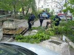 Moldovans tidy up broken branches, following Prime Minister's call (PHOTO)