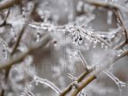 Weather: Yellow warning of frost