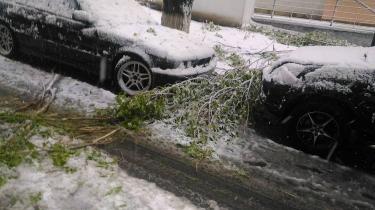 April snow causes HAVOC in Moldova (PHOTO/VIDEO)