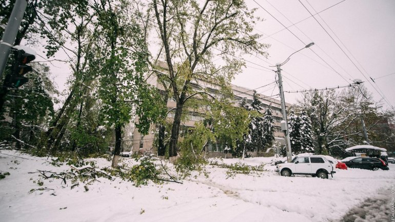 SECOND day of snowstorm in Moldova. Blizzard SHUTS DOWN most of the country (PHOTO/VIDEO)