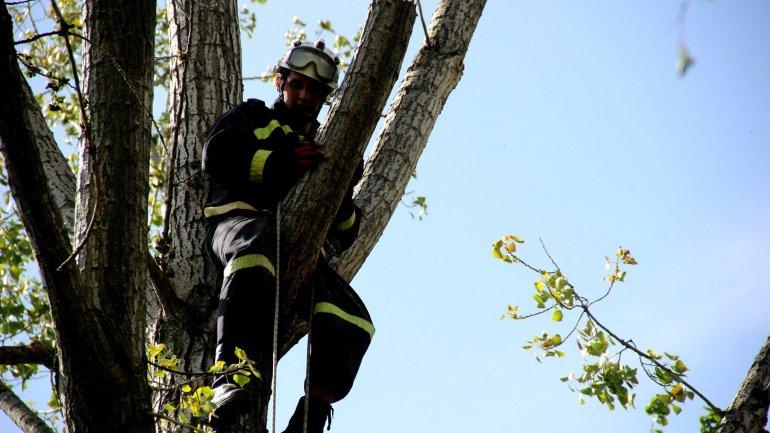 (PHOTO GALLERY) Rescuers, volunteers work hard over weekend to clean up capital city