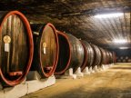 Famed Moldovan wine maker to start exporting to Russia