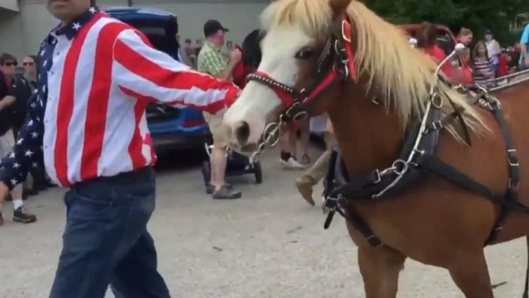 Ponies break loose, injure 3 at Wisconsin Memorial Day parade (VIDEO)