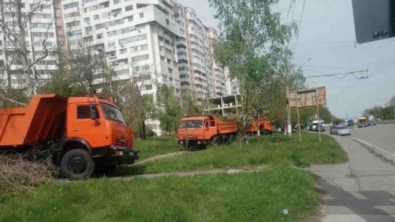 Rescuers continue removing branches in Chisinau, despite May Day
