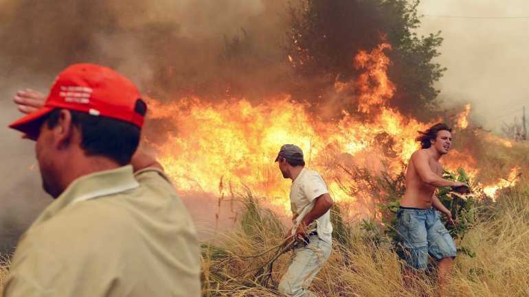 Death toll rises to 62 in wild fire in Portugal
