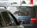 Appalling news in Orhei. Hemp-like plants were spotted in car