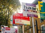 House prices set to increase up to 7% next year despite Brexit