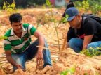 In just 12 hours, Indian volunteers planted 66 million trees