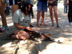 Kids from Transistria to be instructed fighting & weapons