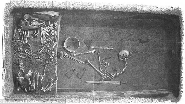 First female viking found from bones excavated back in 1880s