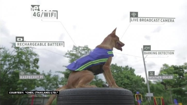 New four-legged Knight to guard the streets of Bangkok