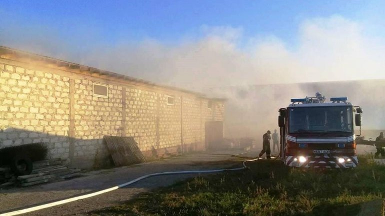Pallet warehouse from Orhei consumed by flames