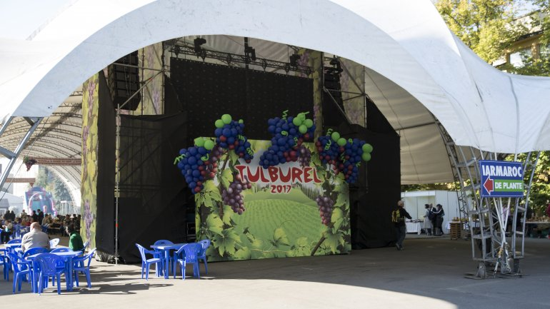 Fresh wine drained from crusher to please visitors in Tulburle Festival 2017 (PHOTOREPORT)
