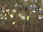 Farmers in Zaim village's Sapling Festival grabbed chances to promote their local brands (video)