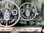 FAO launches project worth $125,000 dedicated to agroecology in Moldova