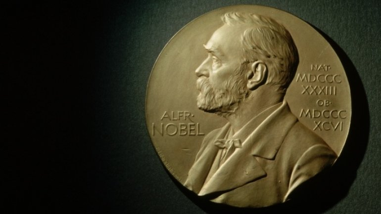 International Campaign to Abolish Nuclear Weapons won 2017 Nobel Peace Prize