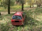 Car found abandoned in forest after it was stolen by three teenagers in Cricova town