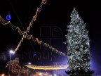 Chisinau City Hall will recover all money spent to purchase and transport the Christmas Tree from Ukraine