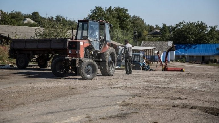 Walker killed after got hit by tractor in Edineţ district