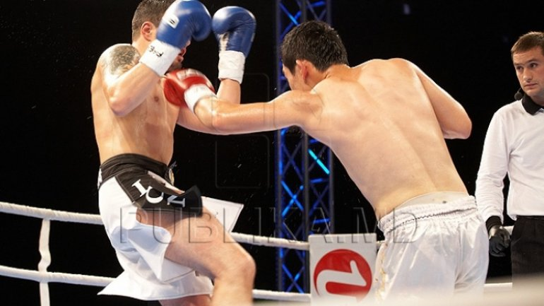 Moldovan kick-boxer,Maxim Bolotov will fight against Habib Ibraghimov, within last KOK Gala of this year
