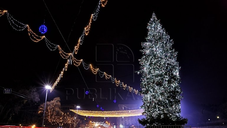 City Hall will install the tallest Christmas tree Chisinau ever saw