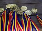 How many medals did Moldova win in European Youth Olympic Festival