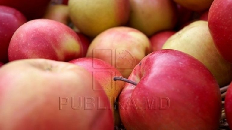 Russia forbid around 20 tons of Moldovan apples owning to moths, larvae