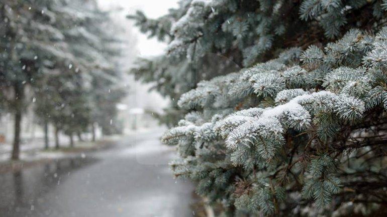 Winter Wonderland in Chisinau (PHOTOREPORT)