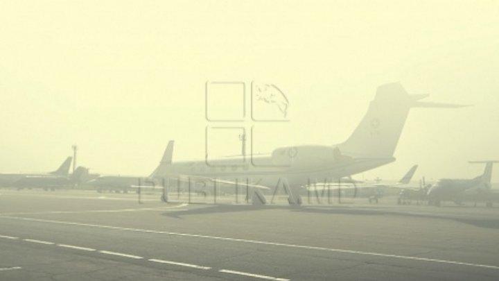 Dense fog caused airline delays