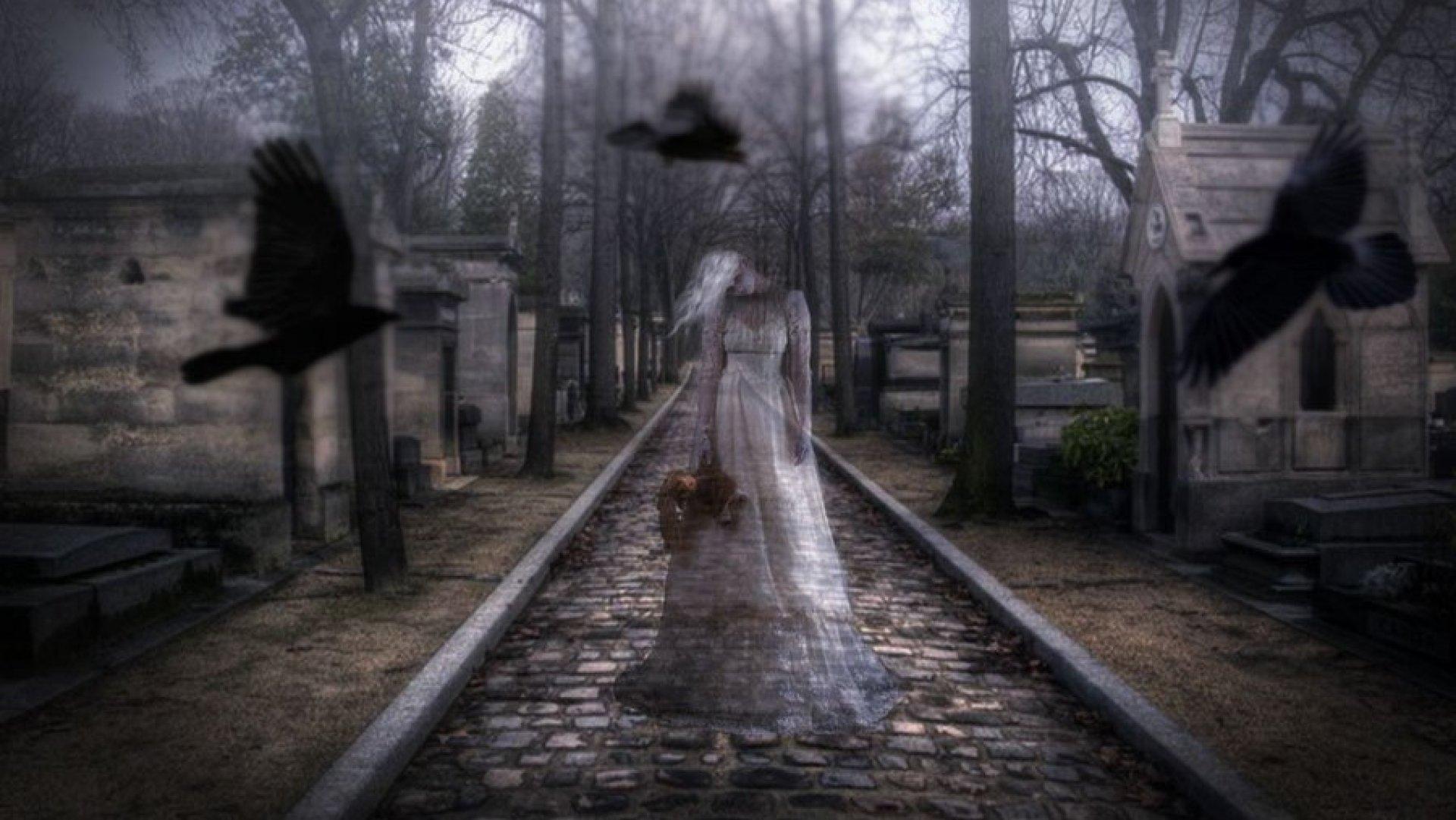 призраки картинки с призраками низкие