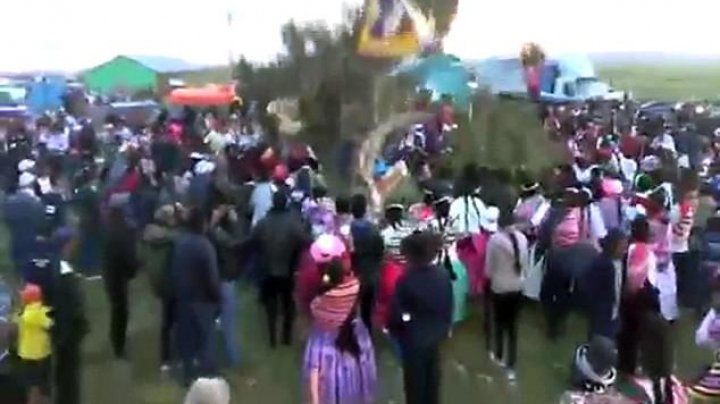 Horrifying moment! Carvival-goer died after being crushed by a falling tree at a traditional tree-cutting event
