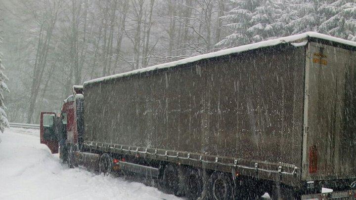 Heavy snow caused a few trucks to be stuck on Chișinău - Hâncești highway