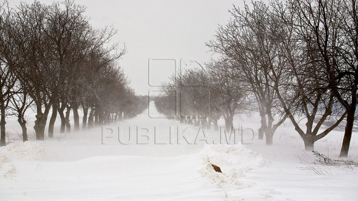 Snowstorm in Moldova. 10 car accidents registered over past 24 hours