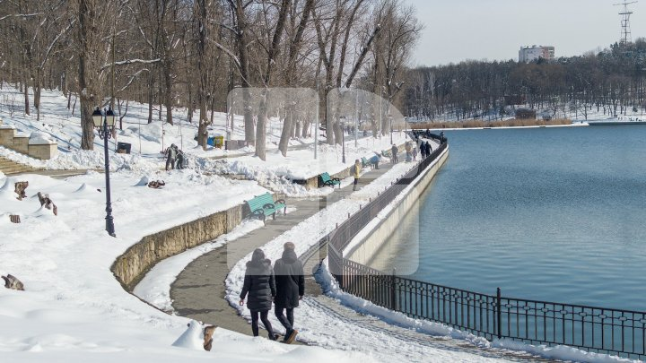 Real spring weather comes: Locals spend day out with nature (Photoreport)