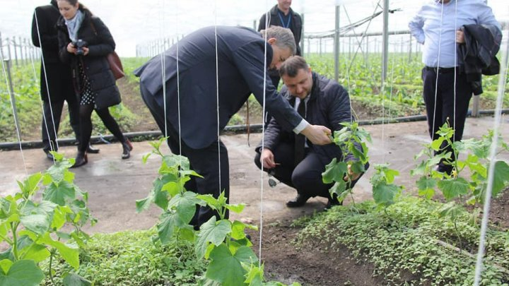 Agriculture Minister on visit to farmers: Subsidies to farmers are important financial supports