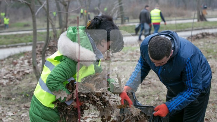 Acting Mayor Silvia Radu urged Heads of sectors to leave office to check clean-up in city