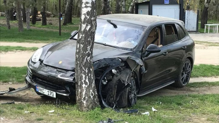 Luxury car hit against tree after dogs attempt to crawl over driver