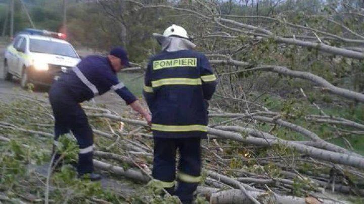 Sleet and strong wind caused havoc last night in Râșcani district (Photo/ Video)